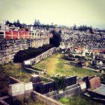 Groby Na Klifie.