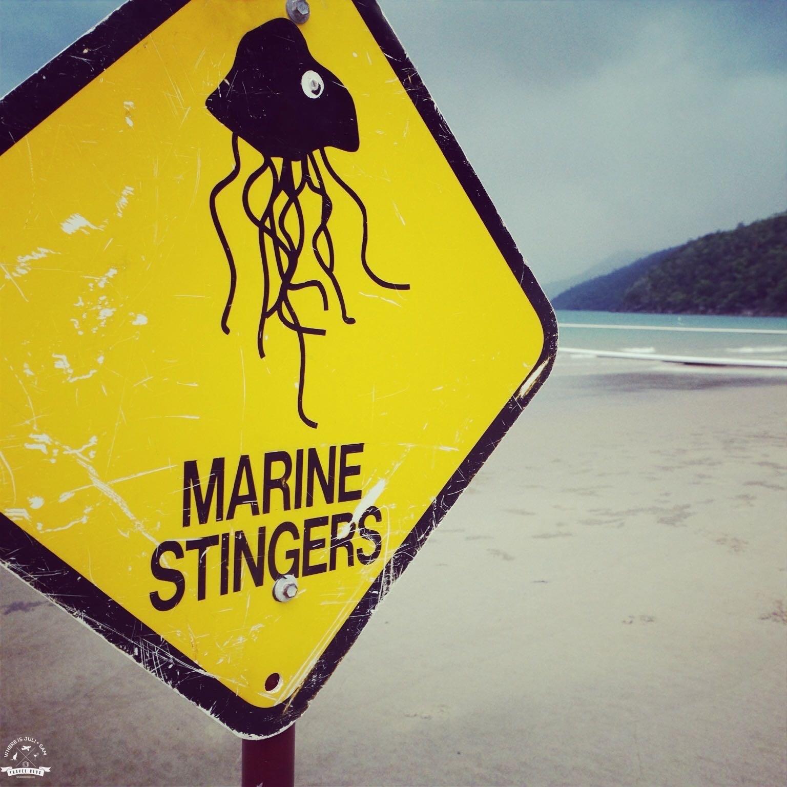 Uwaga na meduzy