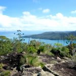 Widoki Z Wyspy Whitsunday