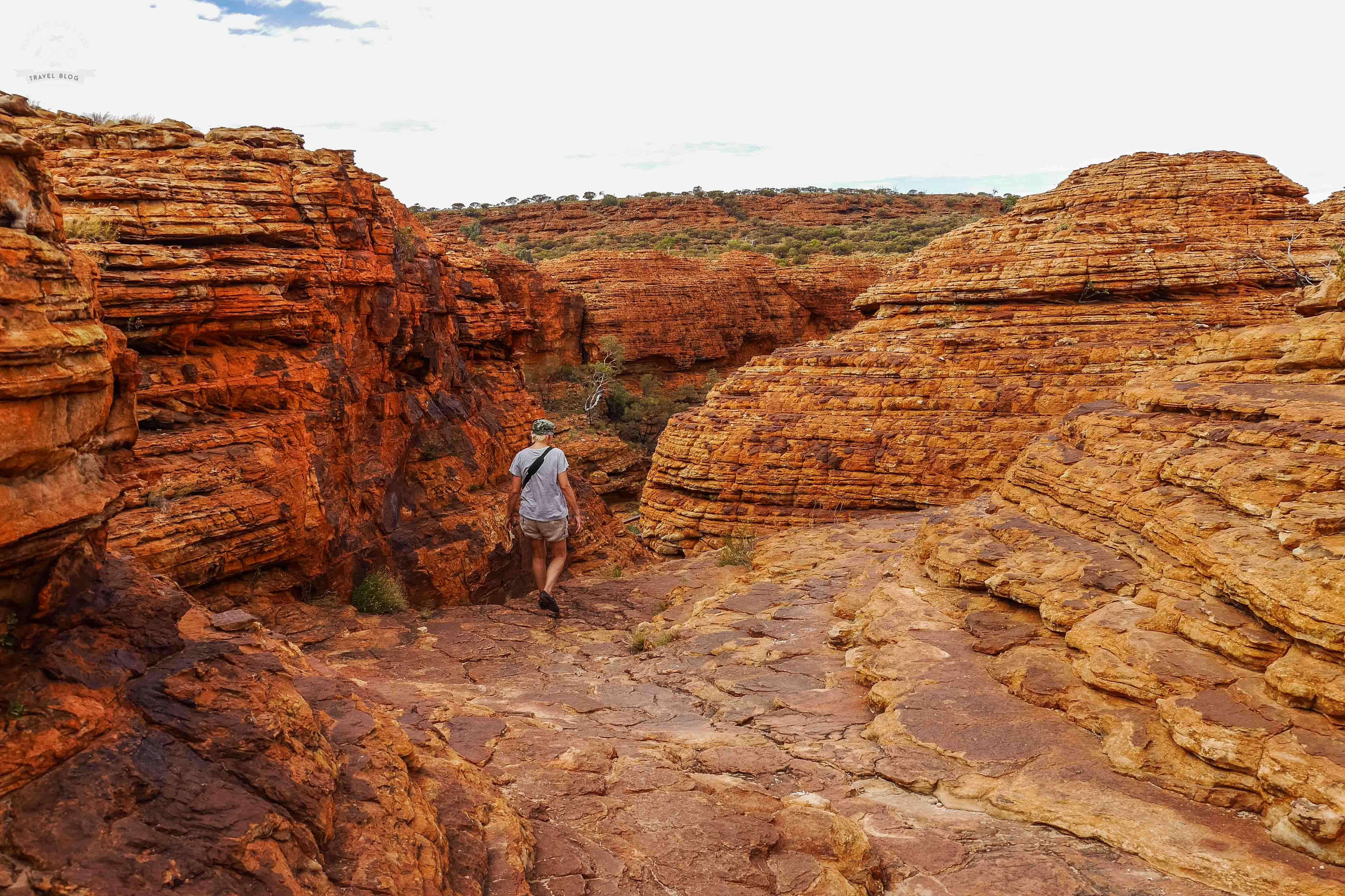 King Canyon scenic walk