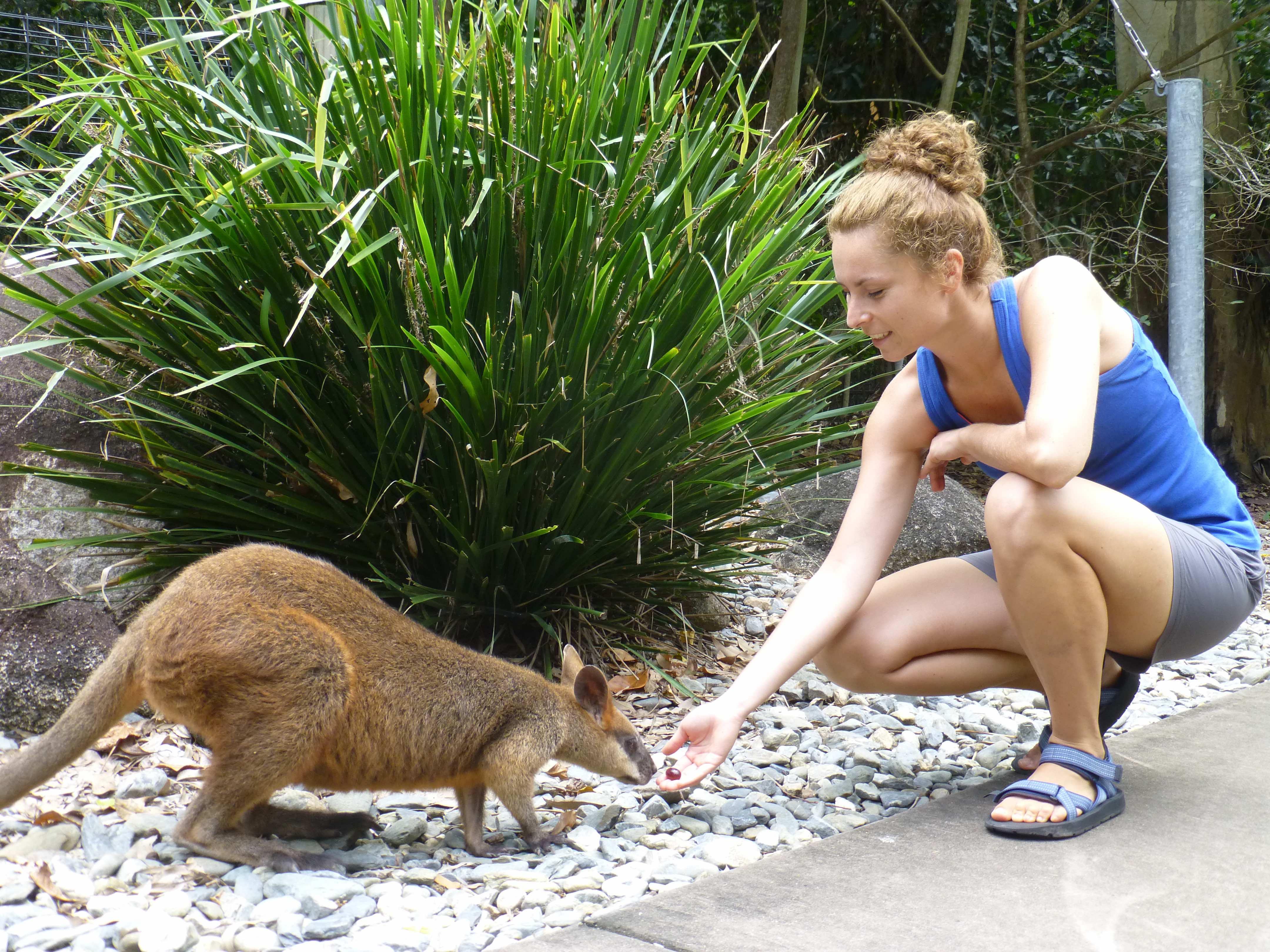Ania Złap Trop w Australii