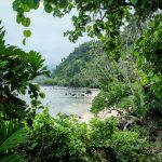 Taveuni Coastal Walk