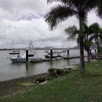 Cooktown Rzeka Endavour
