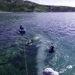 Laguna Lizard Island
