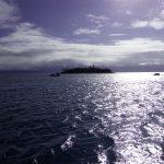 Low Island Port Douglas