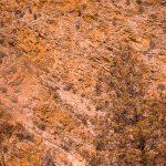 Brachina Gorge Kolory