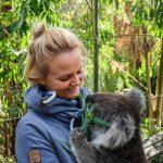 Przytulanie Koali Australia Poludniowa
