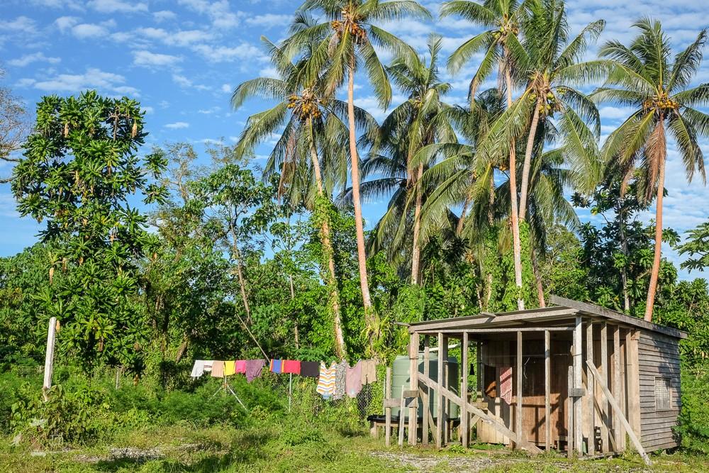 Drewniany domek pod palmami w drodze do wioski Munda