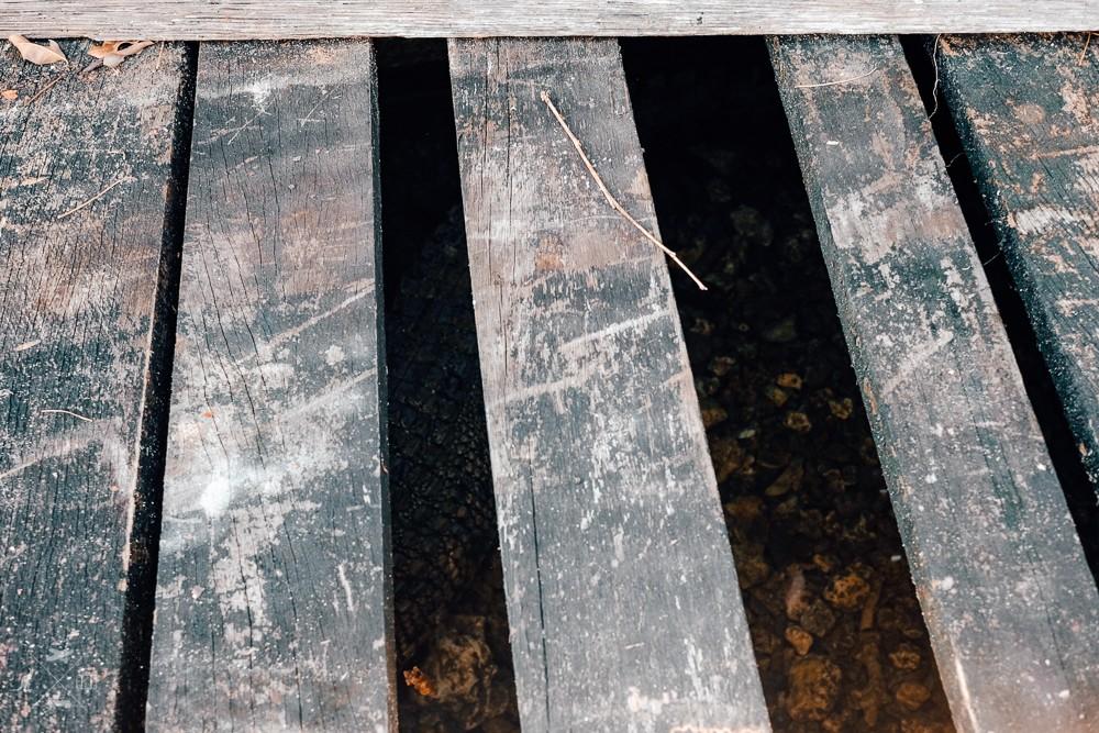 Drewniana podłoga pod którą od lat mieszka krokodyl różańcowy